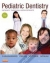 Pediatric Dentistry Paul S. Casamassimo, Henry W. Fields, Dennis J. McTigue, Arthur Nowak 9780323085465